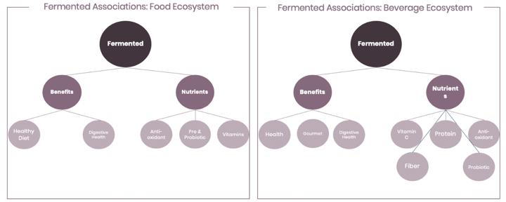 Fermented in Food & Beverage